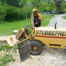 Stubbefresing